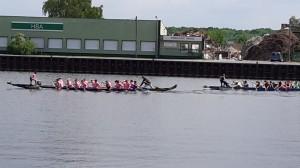 Drachenboot3